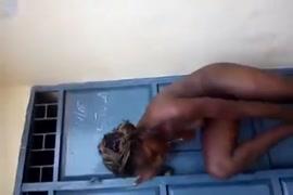 छोटी लडकीयो का xx video download