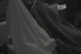 सेक्स फिल्म विडिया